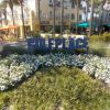 """30A Suite Escape""   45 Town Center Loop #317   Santa Rosa Beach"